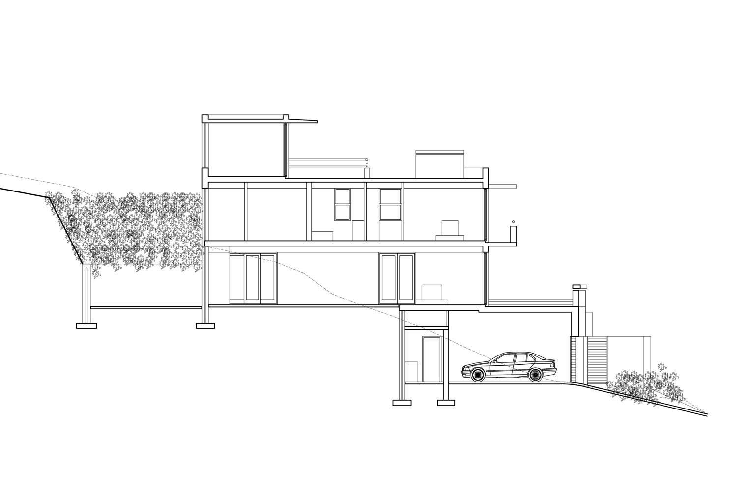 House Ferraz - Section